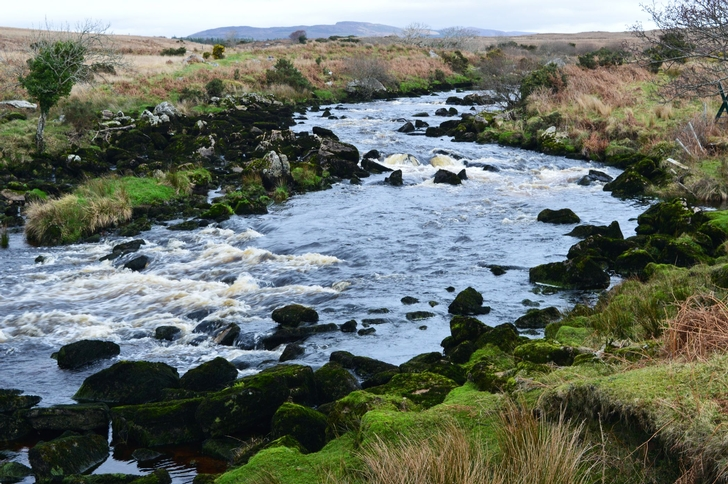 Owennea River at Top of Farm