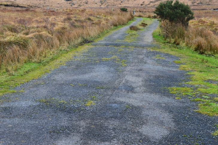 Access Road to Rear of the Farm