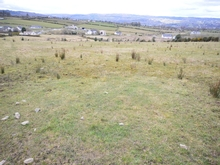 73.4 Acre Farm For Lease at Kinletter, Ballybofey, Co. Donegal