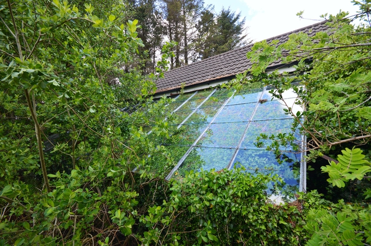 View of Disused Glasshouse