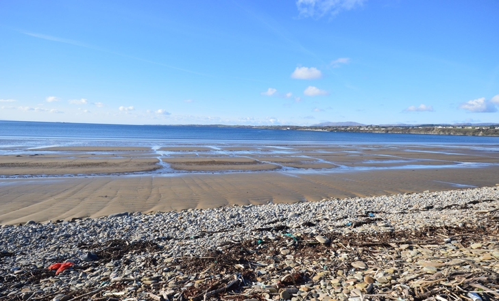 View of Inver Beach From Farm
