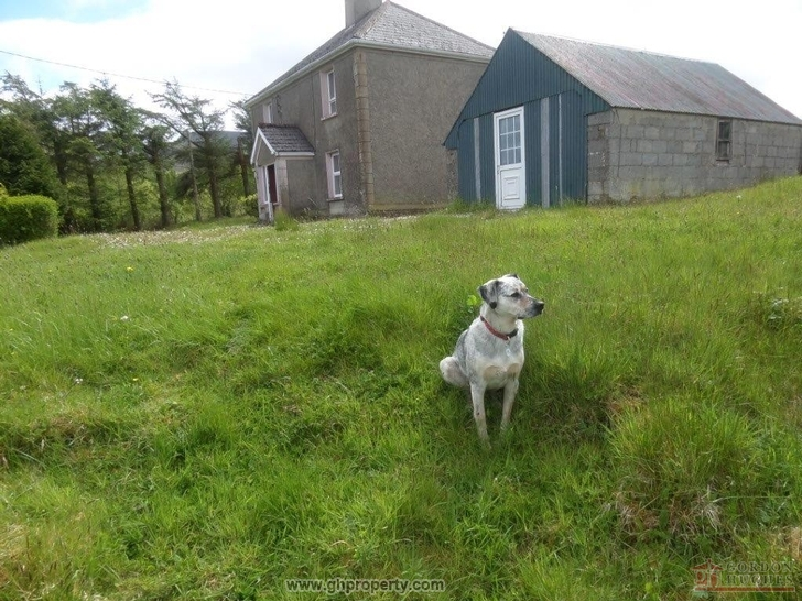 Cherry Tree Farm, Corleckagh Lower, Glangevlin, Co. Cavan N41 EV50